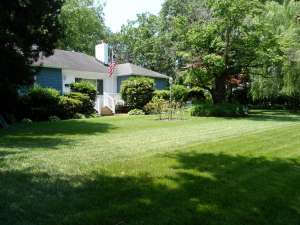 Rob and Lisa Lain of 301 Thole St. are displaying Suburban Acres Yard of the Month mermaid for May